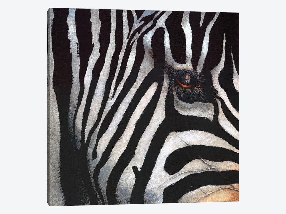 Zebra by Dave Bartholet 1-piece Canvas Artwork