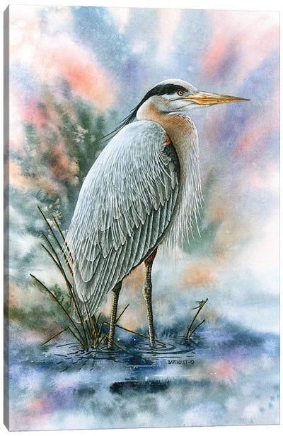 Marsh Master Canvas Art Print