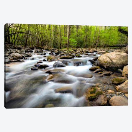 Below The Bridge Canvas Print #DBU1} by Daniel Burt Canvas Art