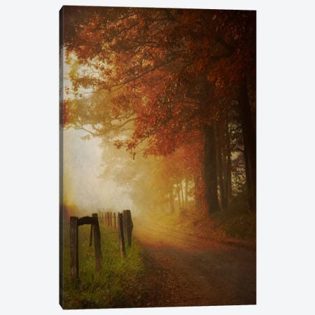 Come To The Light Canvas Print #DBU2} by Daniel Burt Canvas Wall Art