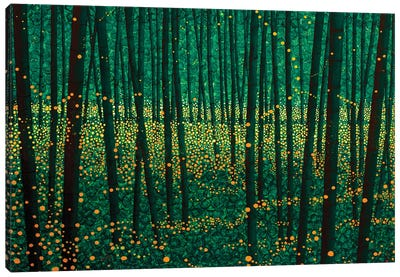 Lightning Bugs Canvas Art Print