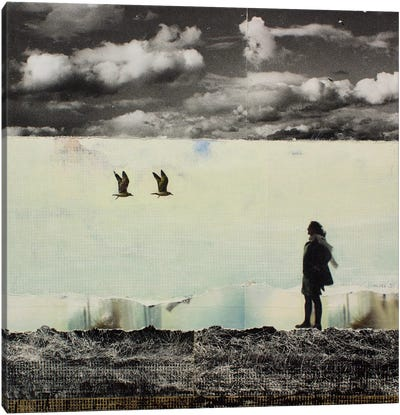 Anyway The Wind Blows Canvas Print #DBW4