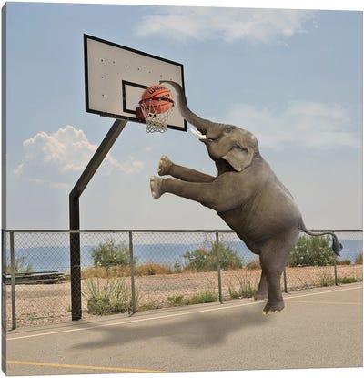 Basketball Canvas Art Print