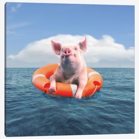 Pig On Vacation Canvas Print #DBY13} by Dmitry Biryukov Canvas Artwork