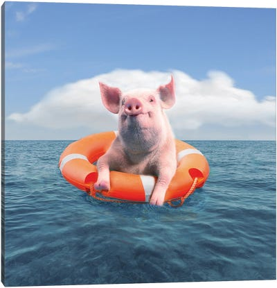 Pig On Vacation Canvas Art Print