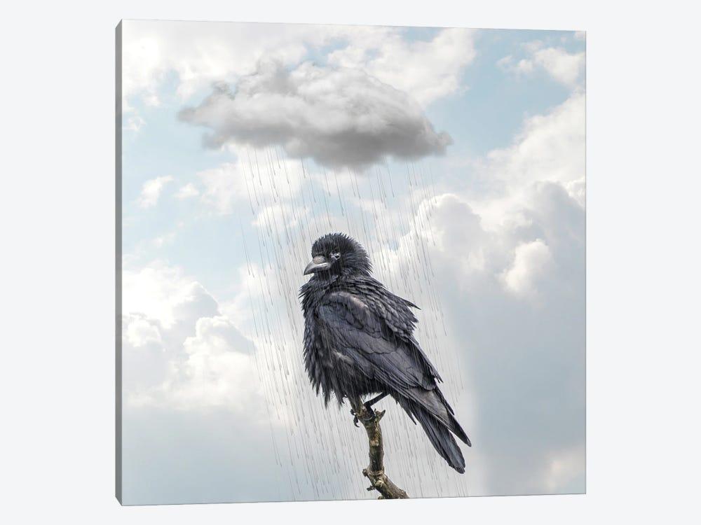 Raven I by Dmitry Biryukov 1-piece Art Print