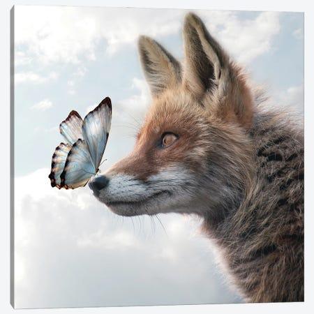 Fox Of Butterflies Canvas Print #DBY16} by Dmitry Biryukov Canvas Print