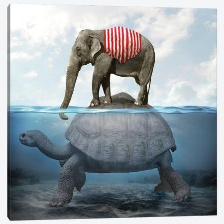 Elephant Turtle I Canvas Print #DBY17} by Dmitry Biryukov Canvas Art Print