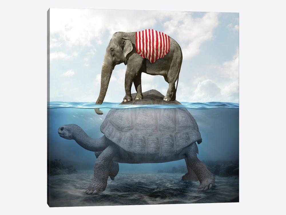 Elephant Turtle I by Dmitry Biryukov 1-piece Canvas Art