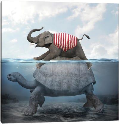Elephant Turtle II Canvas Art Print