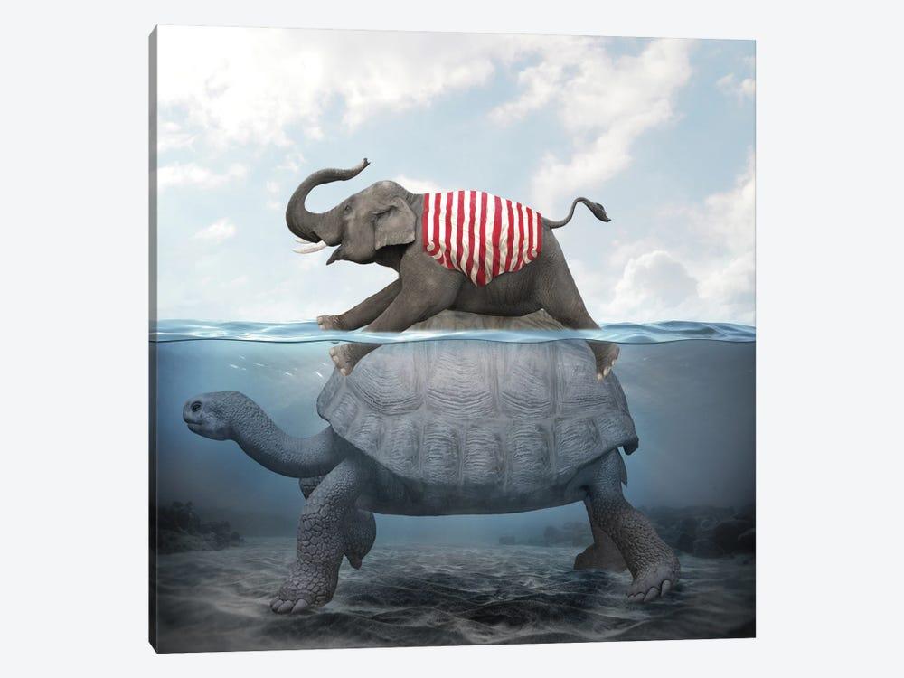 Elephant Turtle II by Dmitry Biryukov 1-piece Canvas Art Print