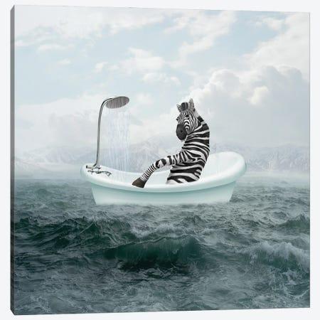 Zebra In The Bathroom Canvas Print #DBY19} by Dmitry Biryukov Canvas Artwork