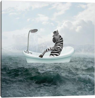 Zebra In The Bathroom Canvas Art Print