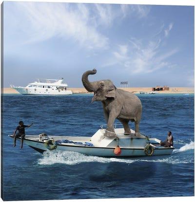 Elephant On A Boat Canvas Art Print