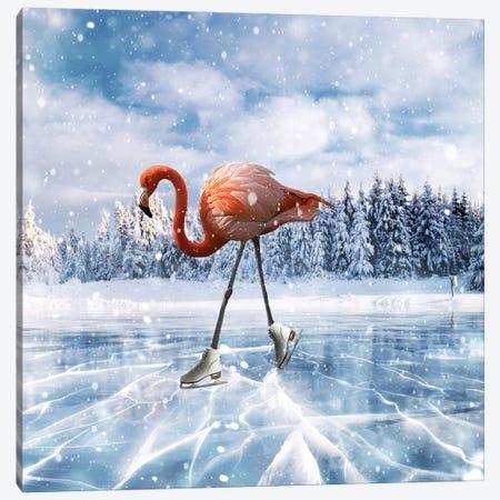 Flamingos On Ice Canvas Print #DBY21} by Dmitry Biryukov Canvas Art Print