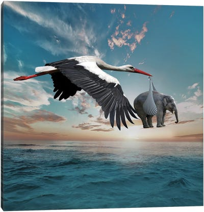 Stork Canvas Art Print