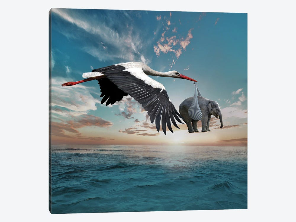 Stork by Dmitry Biryukov 1-piece Canvas Wall Art