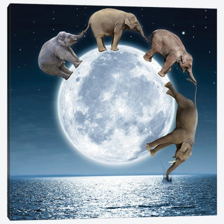 Elephants On The Moon Canvas Print #DBY23} by Dmitry Biryukov Canvas Print