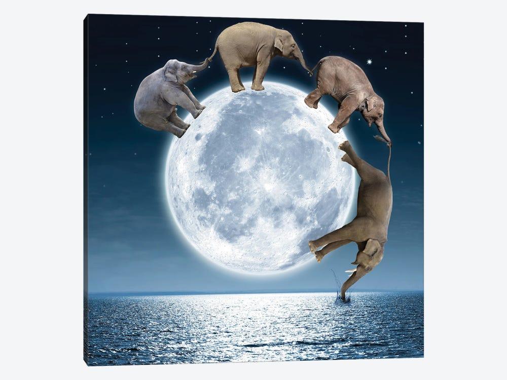 Elephants On The Moon by Dmitry Biryukov 1-piece Canvas Print
