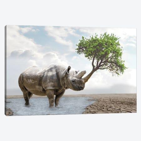 Rhino Tree Canvas Print #DBY25} by Dmitry Biryukov Canvas Artwork