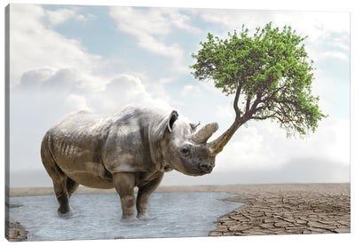 Rhino Tree Canvas Art Print
