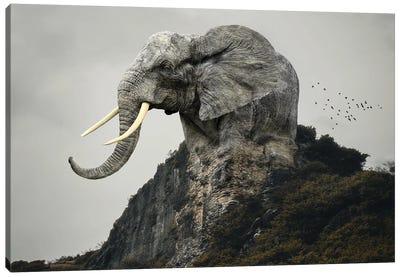 Elephant Mountain Canvas Art Print
