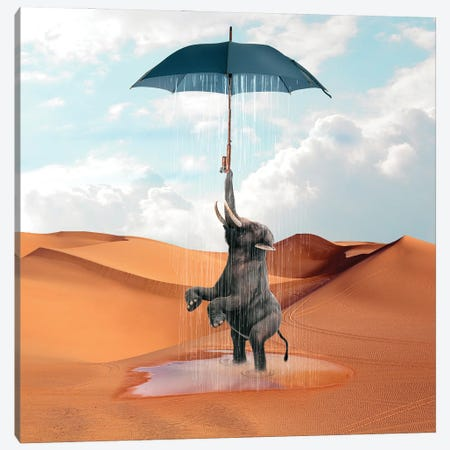 Elephant Desert Canvas Print #DBY32} by Dmitry Biryukov Canvas Wall Art