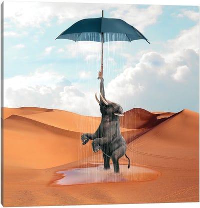Elephant Desert Canvas Art Print