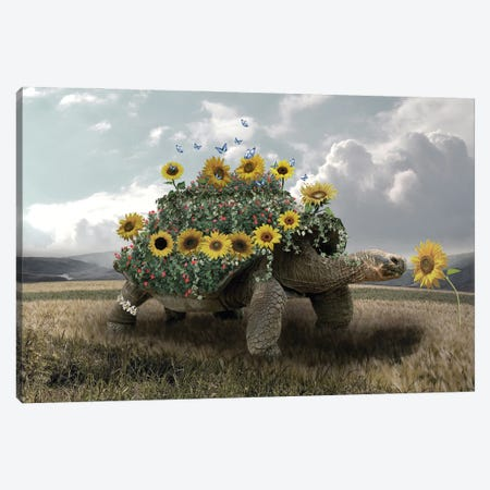 Turtle Sunflower Canvas Print #DBY33} by Dmitry Biryukov Canvas Artwork
