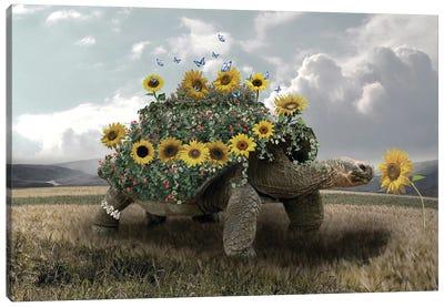 Turtle Sunflower Canvas Art Print