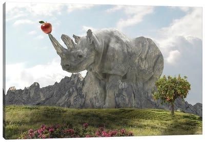 Rhino Rock Canvas Art Print