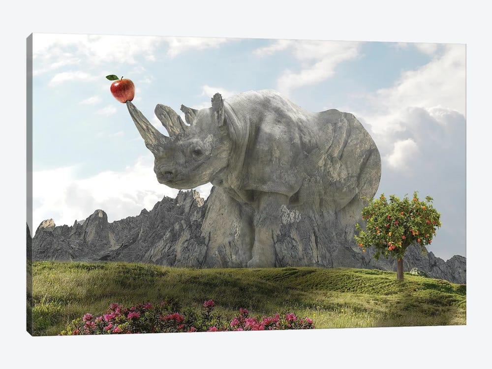 Rhino Rock by Dmitry Biryukov 1-piece Art Print