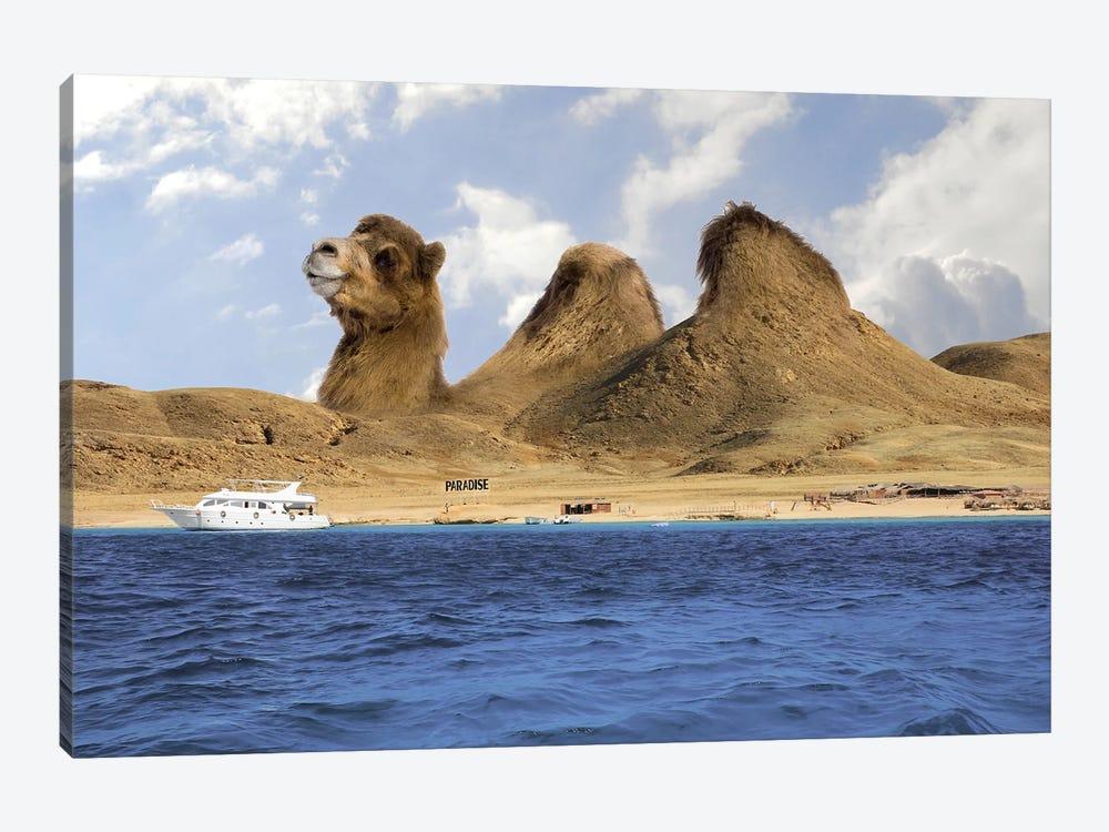 Camel Mountains by Dmitry Biryukov 1-piece Canvas Artwork