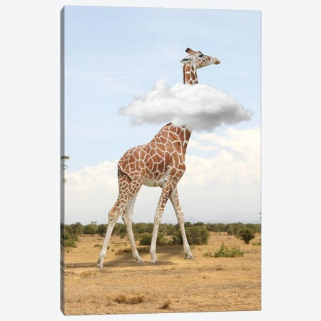 Giraffe In The Clouds Canvas Print #DBY37} by Dmitry Biryukov Canvas Print