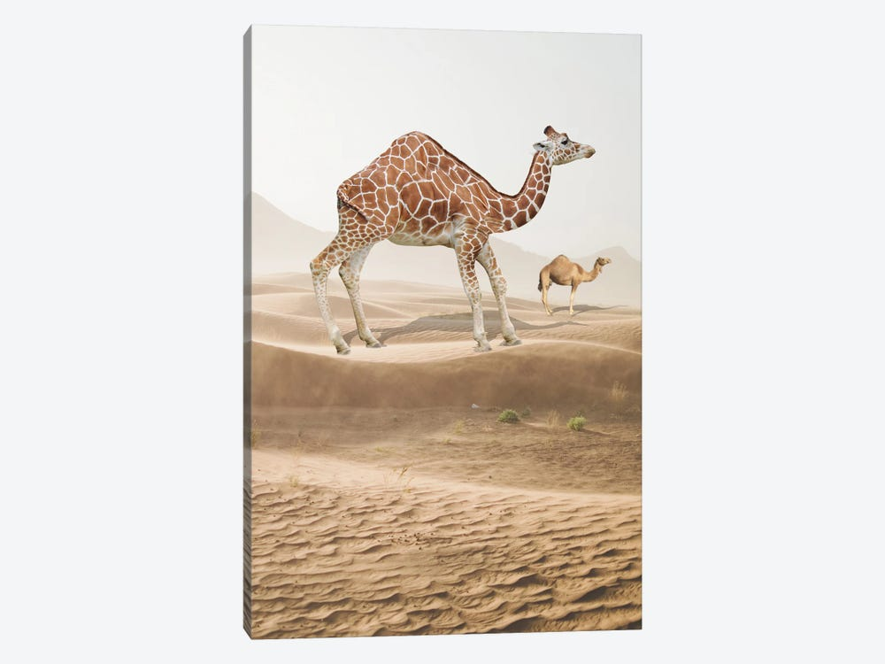Giraffe Camel by Dmitry Biryukov 1-piece Canvas Print