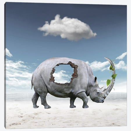 Rhinoceros Canvas Print #DBY3} by Dmitry Biryukov Canvas Wall Art