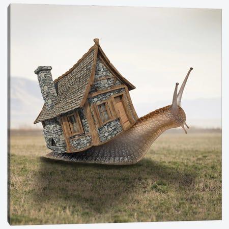 House Canvas Print #DBY40} by Dmitry Biryukov Art Print