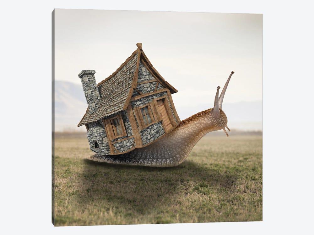House by Dmitry Biryukov 1-piece Canvas Wall Art