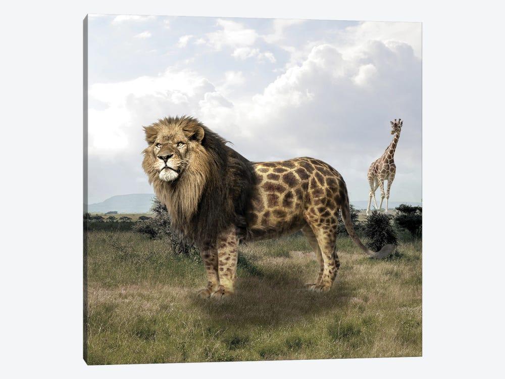 Lion by Dmitry Biryukov 1-piece Canvas Wall Art