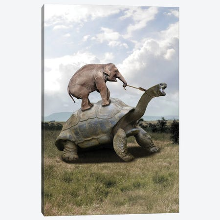Drive Canvas Print #DBY49} by Dmitry Biryukov Canvas Print