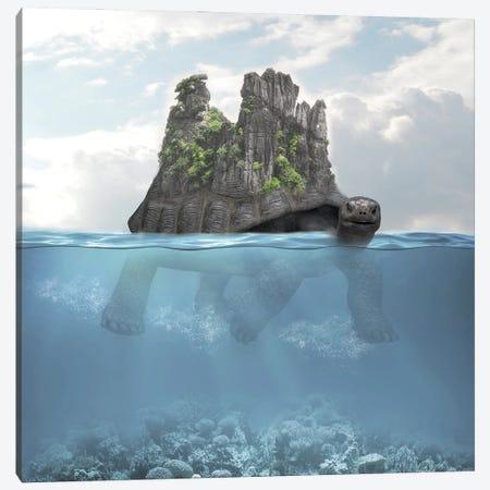 Turtle Island Canvas Print #DBY4} by Dmitry Biryukov Canvas Art Print