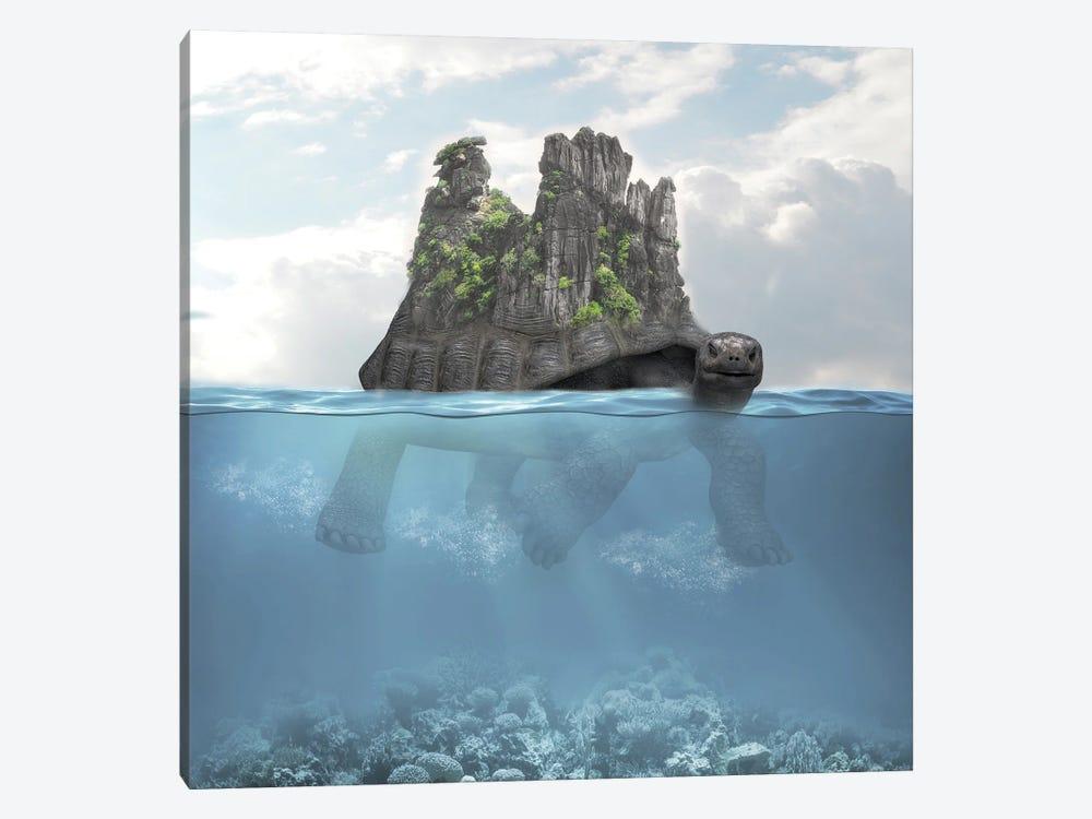 Turtle Island by Dmitry Biryukov 1-piece Canvas Print