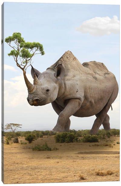 Rhino Mountain I Canvas Art Print