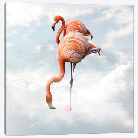 Flamingo Canvas Print #DBY6} by Dmitry Biryukov Canvas Print