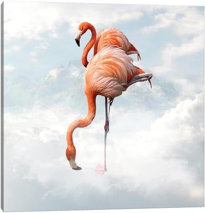 Flamingo Canvas Art Print
