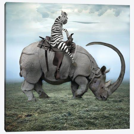 Zebra Stripes On A Rhino Canvas Print #DBY9} by Dmitry Biryukov Canvas Wall Art