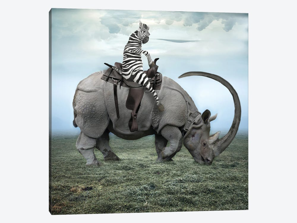 Zebra Stripes On A Rhino by Dmitry Biryukov 1-piece Canvas Art