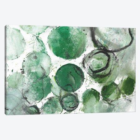 Alex Calder Green II Canvas Print #DCH110} by Deb Chaney Canvas Wall Art