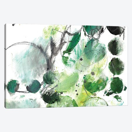 Alex Calder Green I Canvas Print #DCH111} by Deb Chaney Canvas Artwork