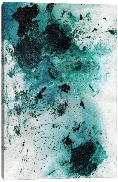 Amphitrite Point West Coast Canvas Art Print